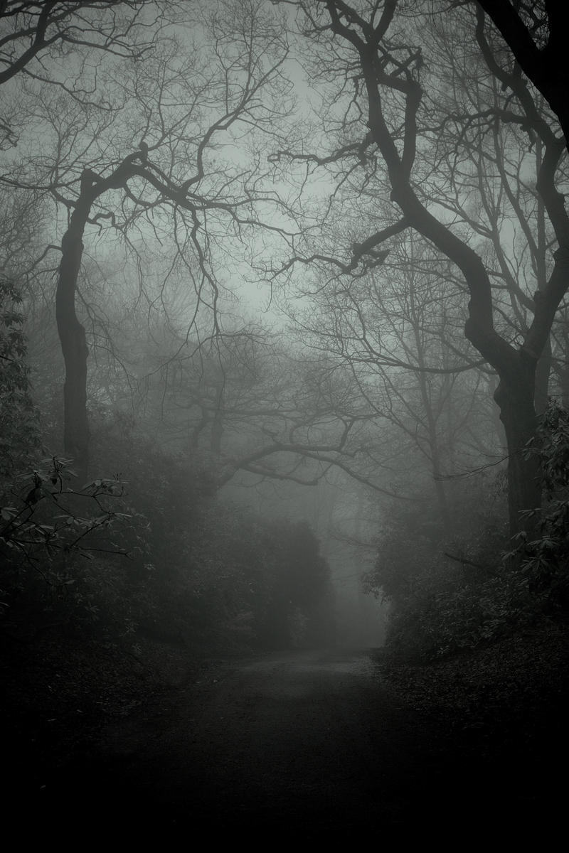 Lacertine Forest by Lady-Twiglet