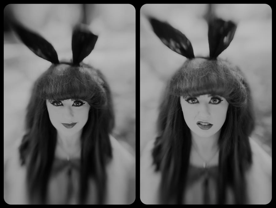 run rabbit run by Lady-Twiglet