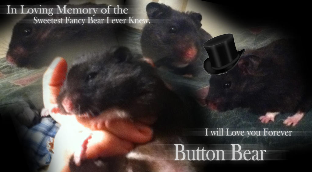 Rest In Peace   Button Leon the Serian Fancy Bear  by SafireCreations