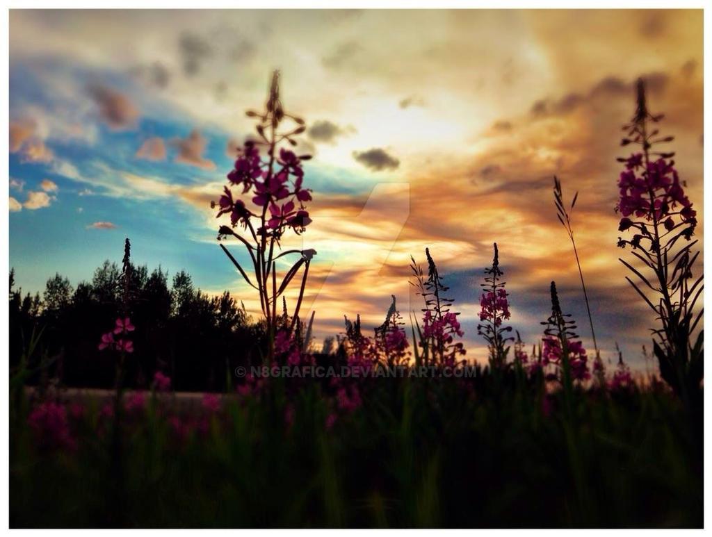 July sky by N8grafica