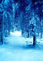 Winter woods III by deadenddoll-stock