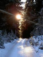 Winter road III by deadenddoll-stock