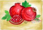 Watercolor - Pomegranate