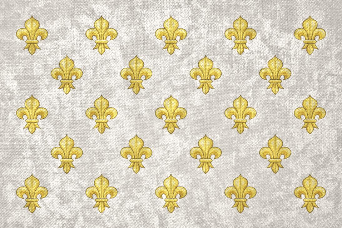 kingdom of france grunge bourbon flag by undevicesimus on deviantart