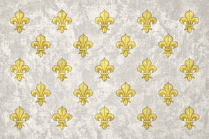 Kingdom of France ~ Grunge Bourbon Flag by Undevicesimus