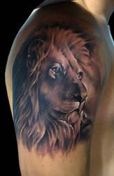 lion by bhbettie