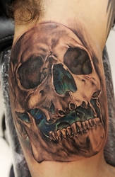 first skull of 2013