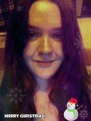 Merry Christmas 2014 by chenoasart