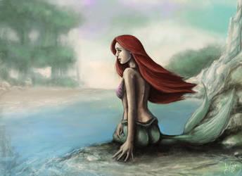 Little Mermaid by Amandia