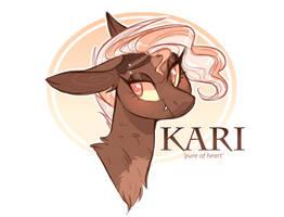 Kari by sararini