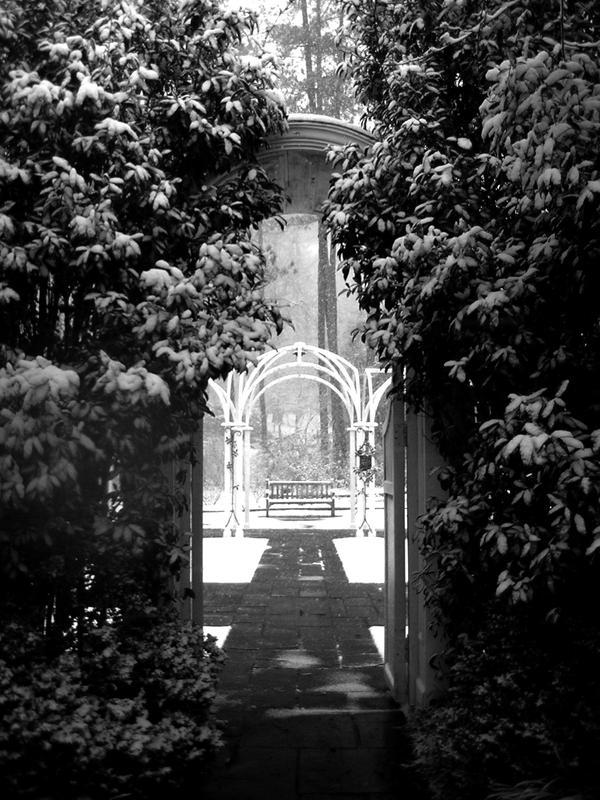 Entering a garden by irishcompass