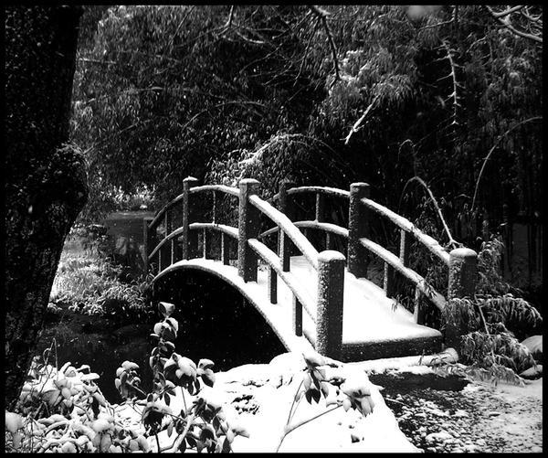 Frosted Bridge by irishcompass