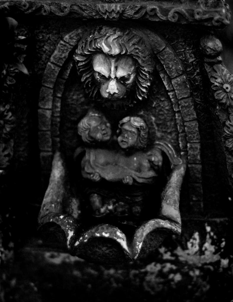 Dark Gardens by irishcompass