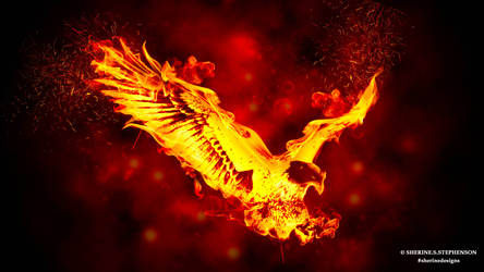 The Burning Eagle - The Burning Fire Series