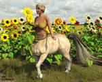 Centauress With Sunflower