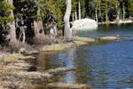 150315 Water Edge