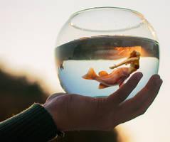20190902 Mermaid in a Fishbowl
