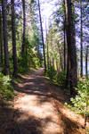 20190921 Sugar Pine Reservoir 29