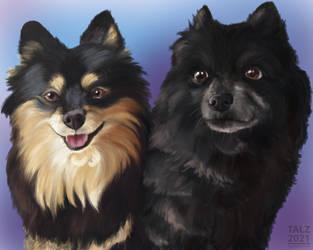 April 14 2021: Pet Portrait Commission