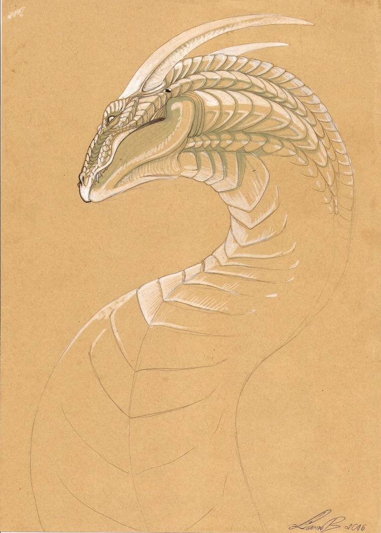 Dragon by Karoughh