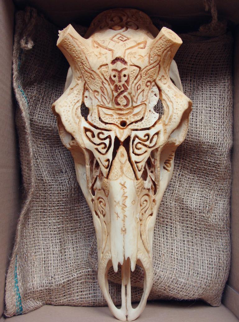 Deer by Karoughh