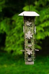 Bird Feeder by MrScruffy