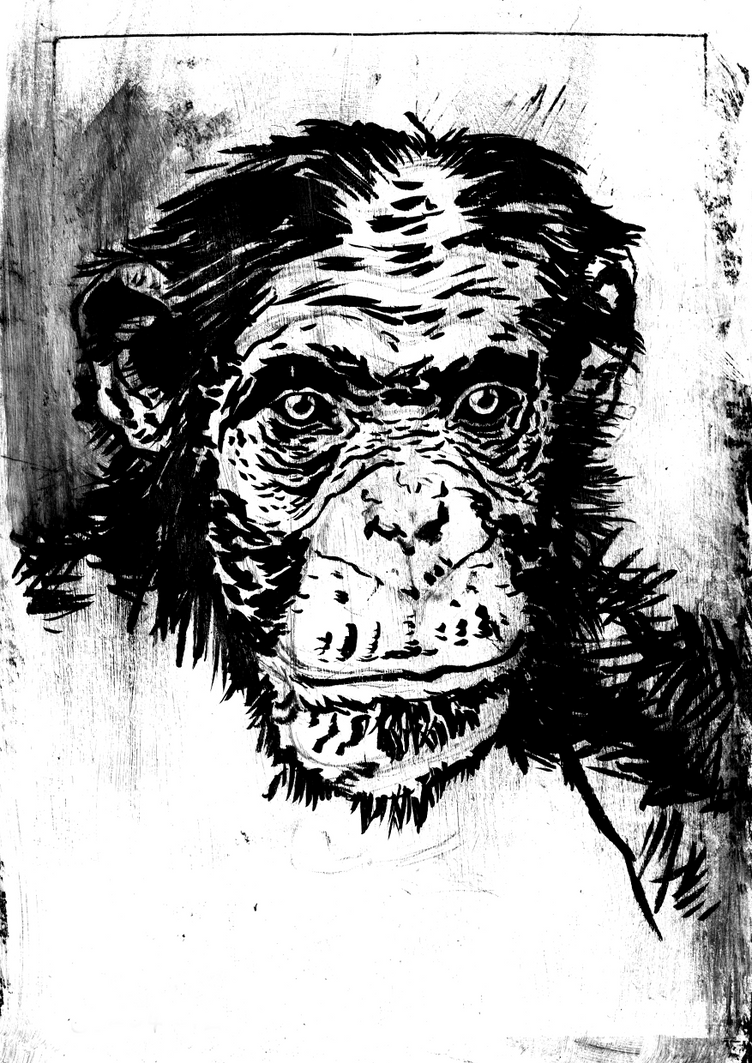 sb-ape study by drnlds