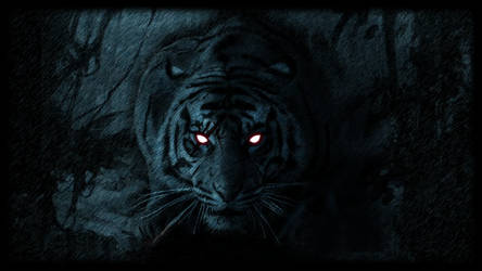 Life of black tiger - Wallpaper 6 by DaytimeTiger