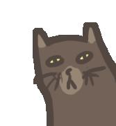 catcatcat by amarz