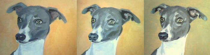 Whippet progress comparison by Groojaw
