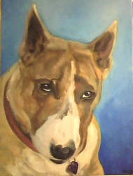 Ruby the Bull Terrier by Groojaw