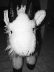 This Goat