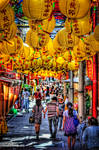 Mid-Autumn Fes in China town
