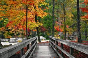 Autumn Bridge by LAlight