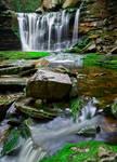 Elakala Falls 1 on Shays Run
