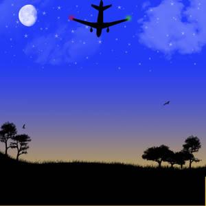 Night time flight