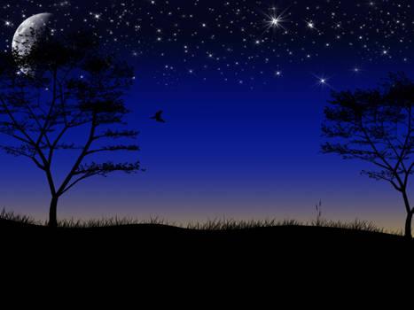 Nightime sky