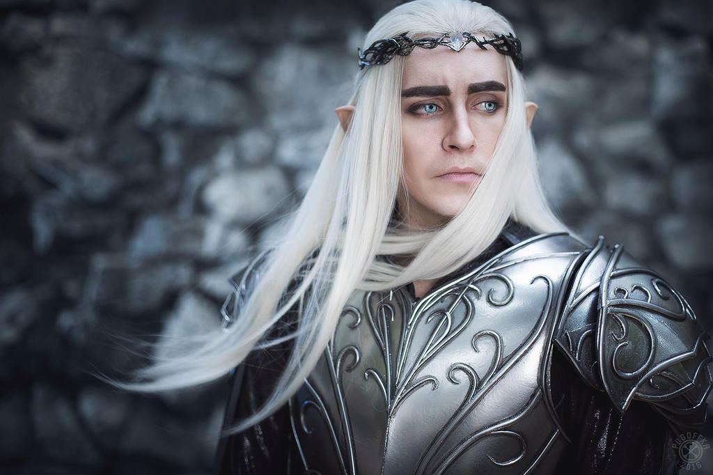 Thranduil mirkwood king by TheIdeaFix