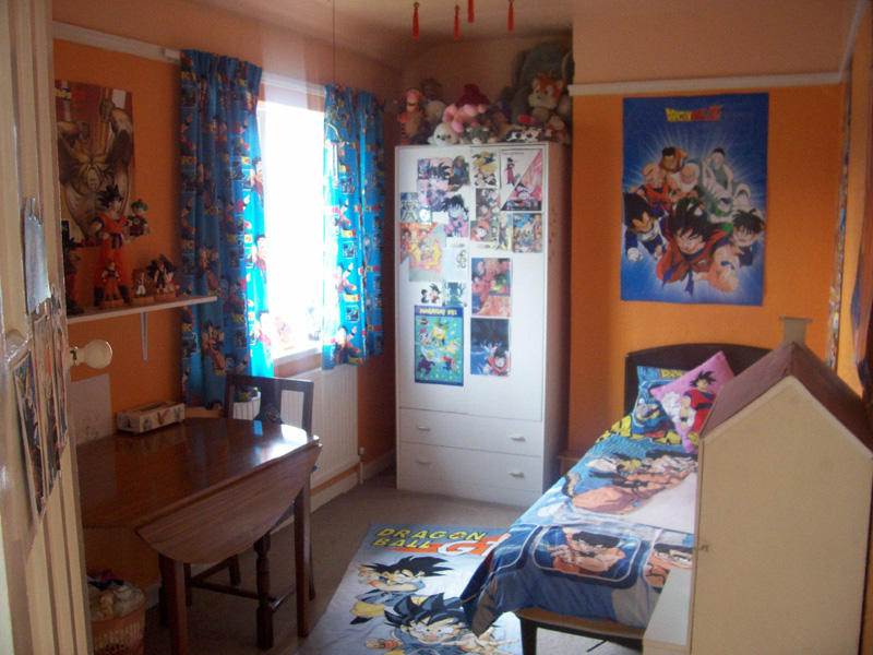 Ma dbz room by gosha chan on deviantart for Dragon ball z living room