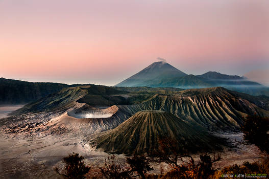 Morning in Bromo