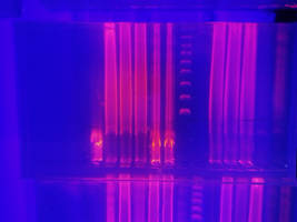 DNA and UV