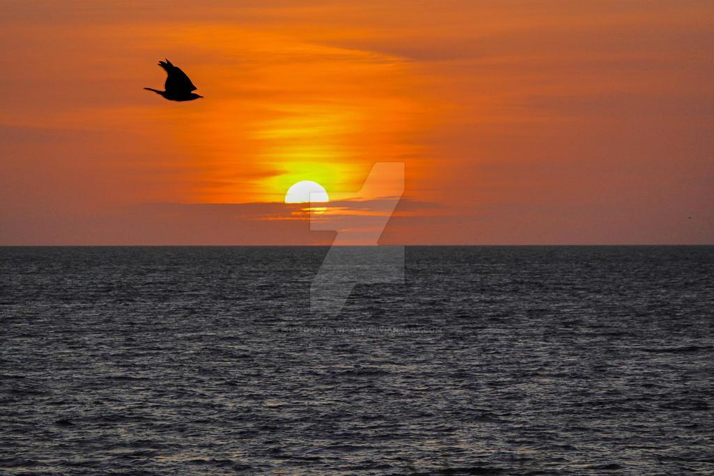 Sunset Beach Scene by Photoshop-Wizard