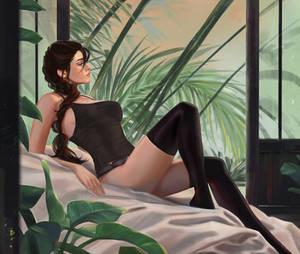 Lara Croft (+NSFW optional).