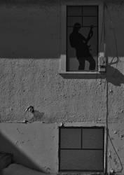 windows by contemporaryhart