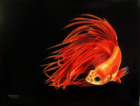 A Fish Named Wanda