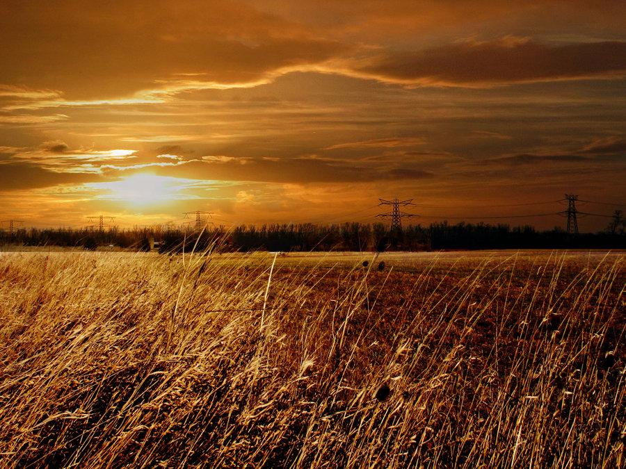 Morning Sun by my-nightmare-reborn