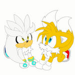 Silver and Tails Animation (my first! :D) by SonicSketch