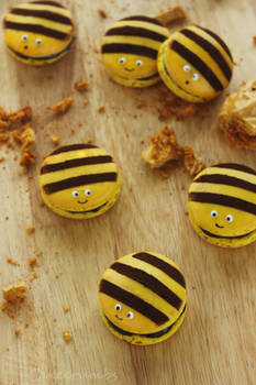 Honey Bee Macarons