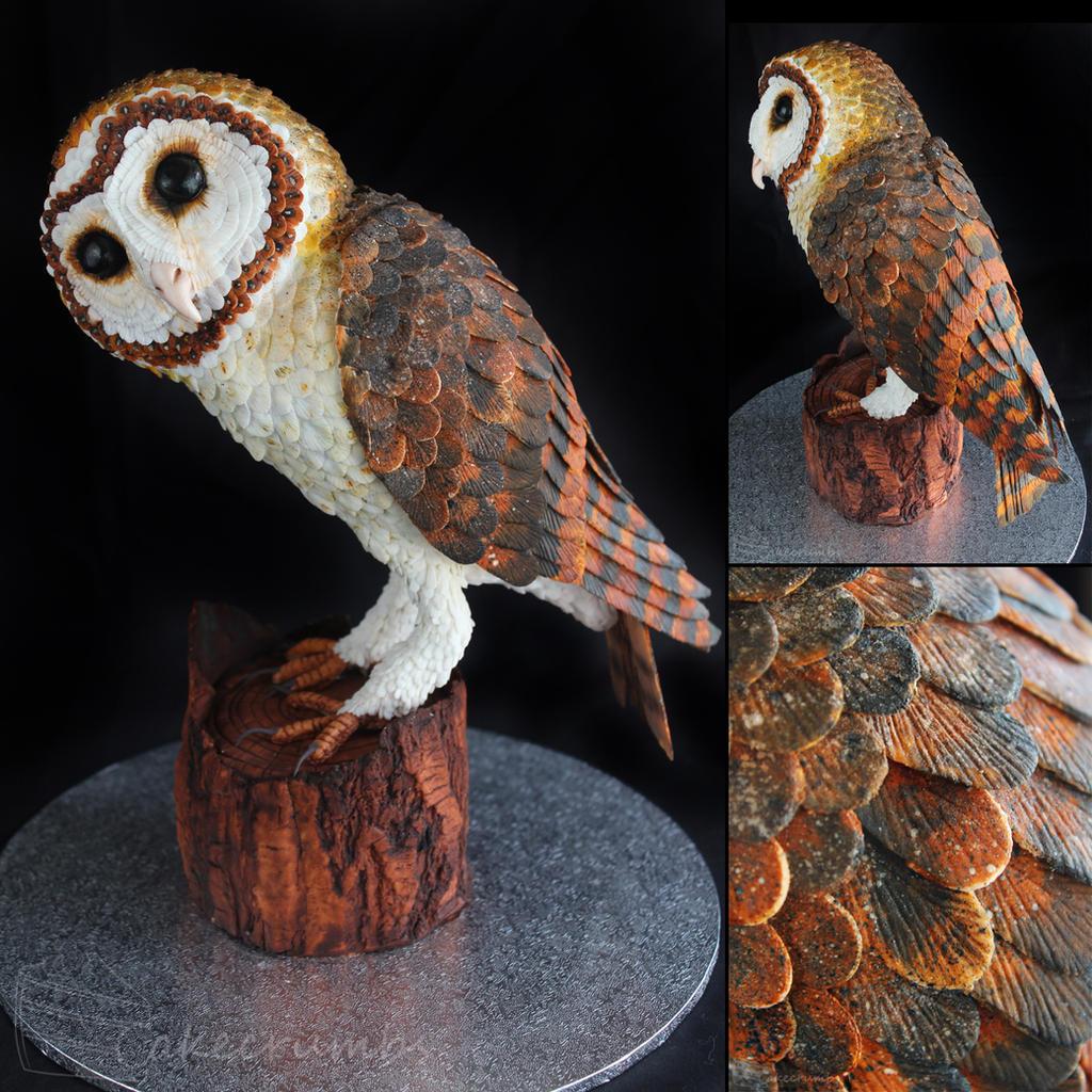 Tasmanian Masked Owl Cake by cakecrumbs