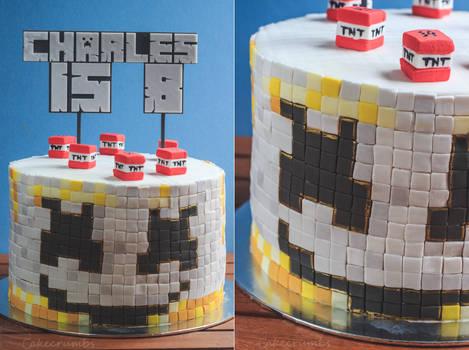 Marshmello Minecraft Rainbow Birthday Cake